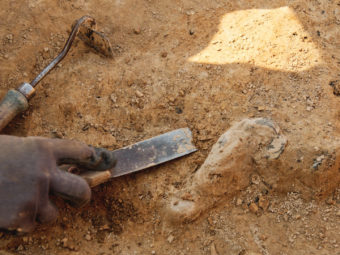 Archaeology and exhumation works